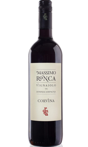 Corvina600x800